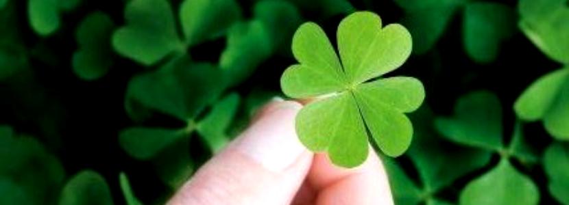Imagem Concursos Públicos: contar com a sorte não é uma boa ideia para ser aprovado